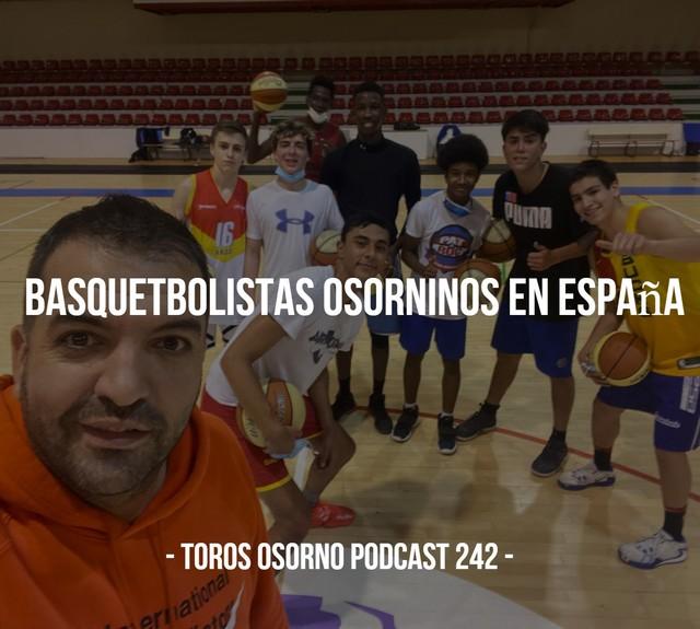 Toros Osorno Podcast 242
