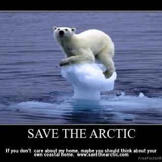 HELP SAVE THE THREAT TO THE POLAR BEARS-JUST ONE CLICK