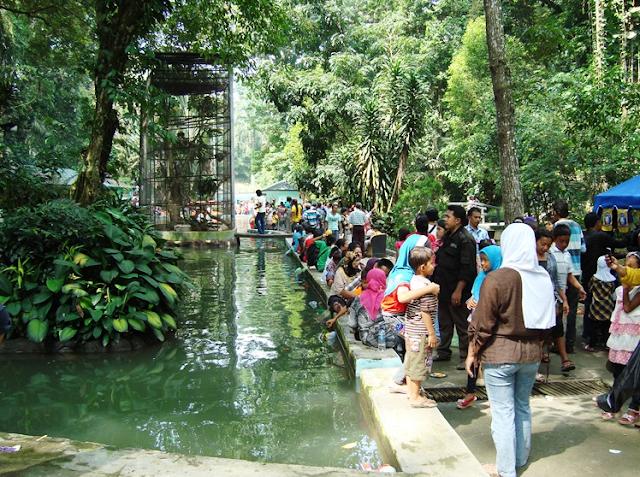 Tempat Wisata Taman Hewan Pematangsiantar