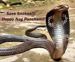 Nag Panchami 2016 Messages,Wishes,Images,SMS,Quotes