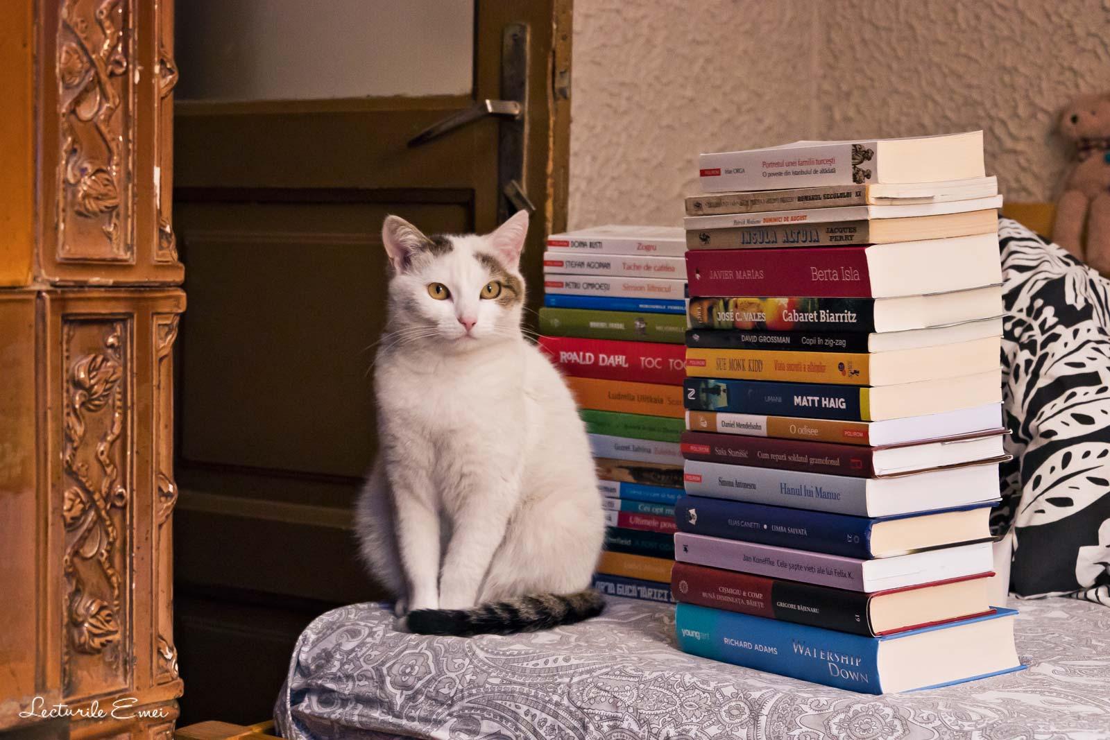 pisica carti de citit