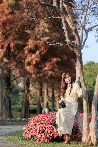彰化永靖成美文化園,百年客家古厝成美公堂、和園唐式庭園造景