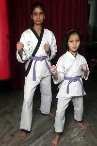 Purple Belt Karate Meaning in Hindi. जानिए कराटे में बैंगनी बेल्ट का मतलब।