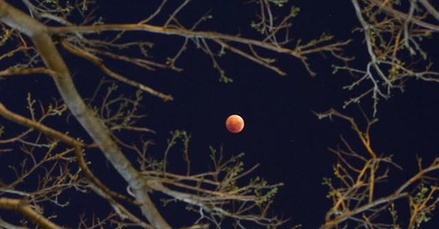 Eclipse - Buenos Aires - Argentina - Natacha Pisarenko