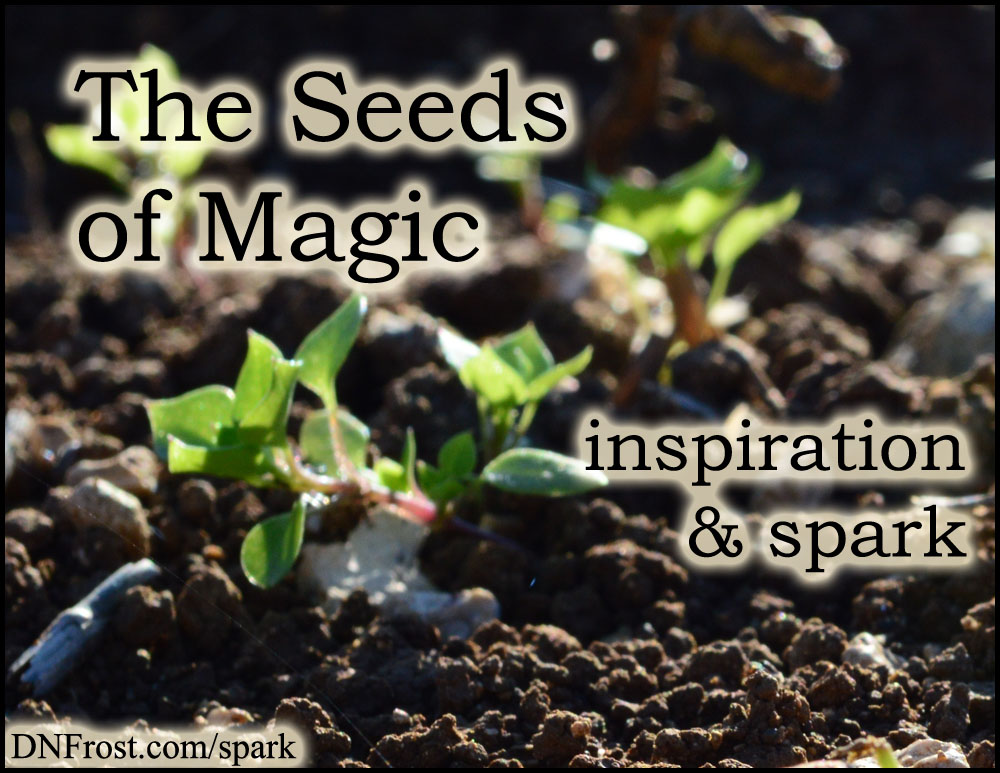 The Seeds of Magic: tropes behind my magic system www.DNFrost.com/spark #TotKW Inspiration and spark by D.N.Frost @DNFrost13 Part 1 of a series.