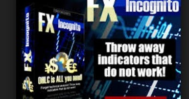 The forex guy review