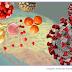 Cientistas da USP ensinam medidas simples para livrar os alimentos do novo coronavírus