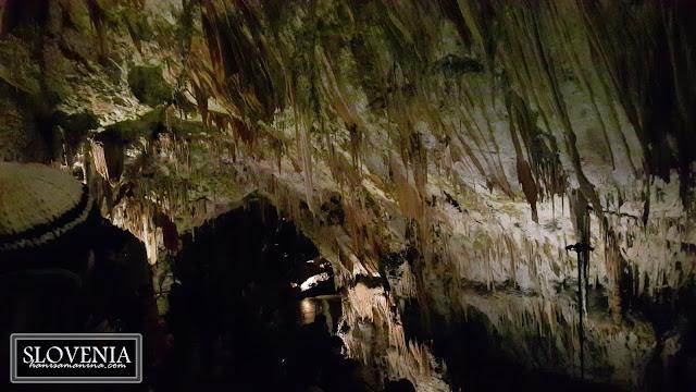Impressive Cave Tour in Postojna Cave, Slovenia