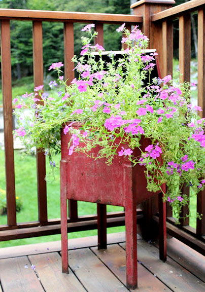 red metal container serves as planter