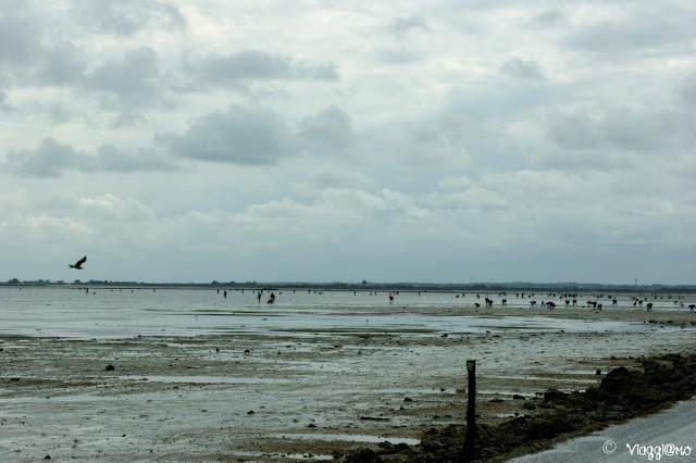Strada e spiaggia del Passage du Gois