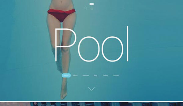 pool-cleaning-wordpress-themes