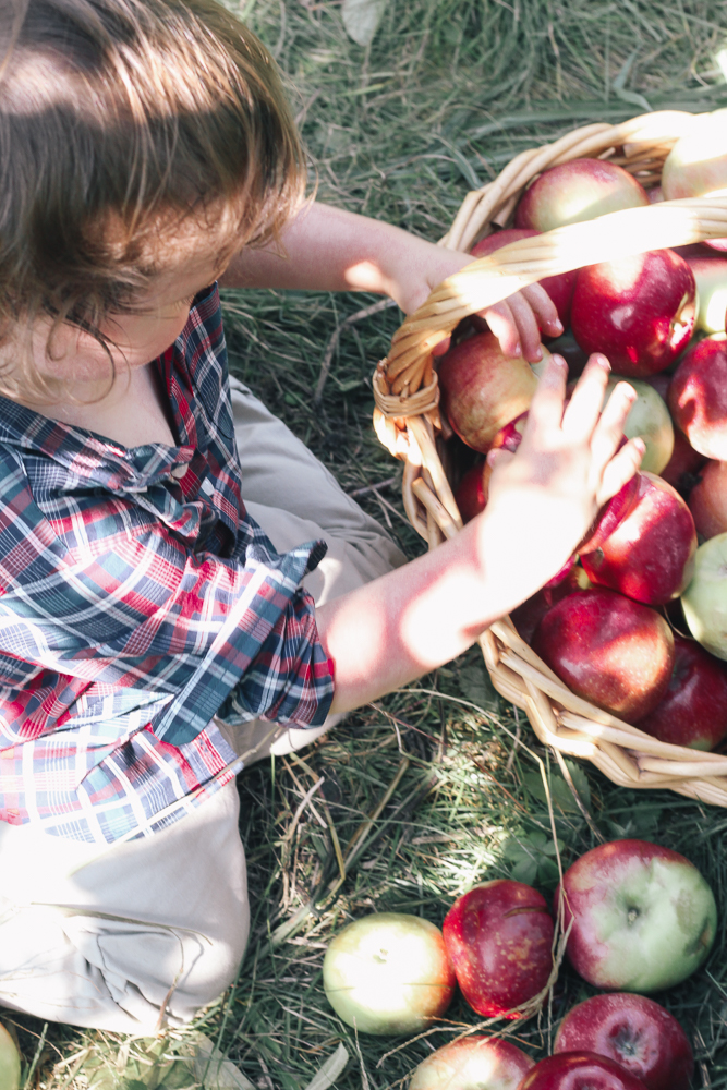 Boston Life & Style Blogger, The Northern Magnolia, discusses her favorite family fall activities.