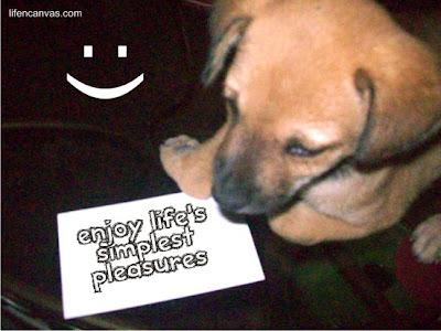 enjoy life's pleasures