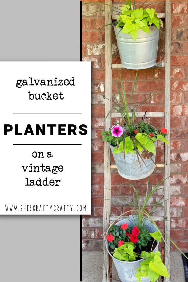 Galvanized Buckets of plants hanging on a vintage ladder.
