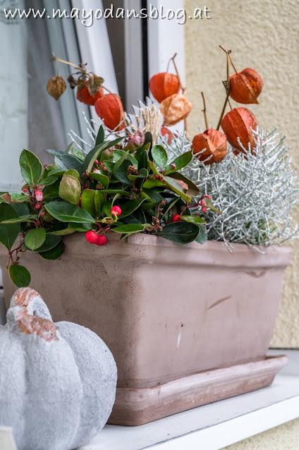 Blumenkasten mit Herbstpflanzen und Dekoration