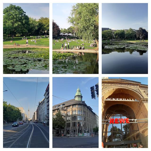 O que ver e fazer de graça em Berlim? Volkspark am Weinberg