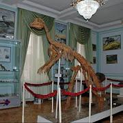 В Узбекистане отреставрировали уникальный скелет утконосого динозавра
