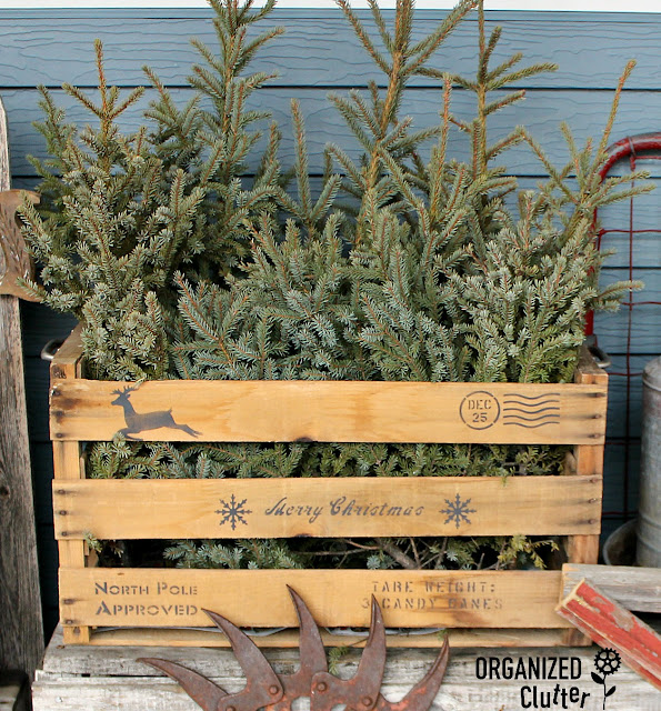 Stenciled Rustic Christmas Crate With Spruce Tips/Tops #oldsignstencils #stencil #RusticChristmas #junkdecor #farmhouseChristmas #crates
