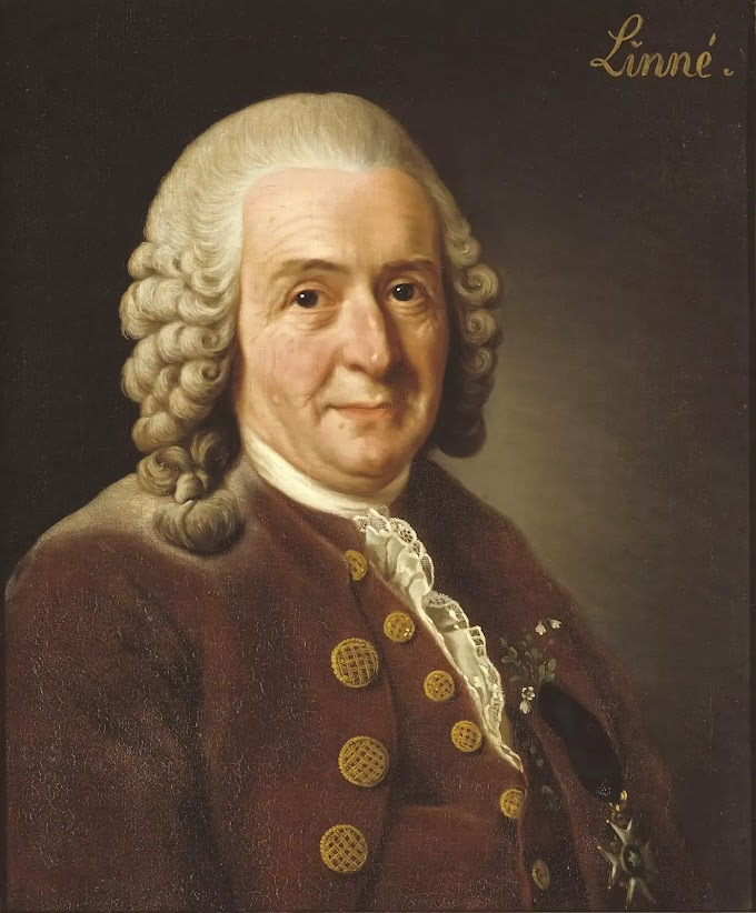 Who is Carl Linnaeus -The Father of Taxonomy (1707-1778) Biography