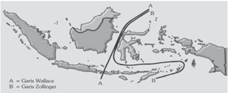 pembagian flora Indonesia oleh Prof. C.G.G.J. Van Steenis