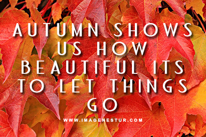 autumn-fall-quotes