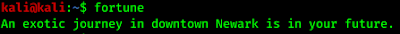fortune teller in linux command line terminal