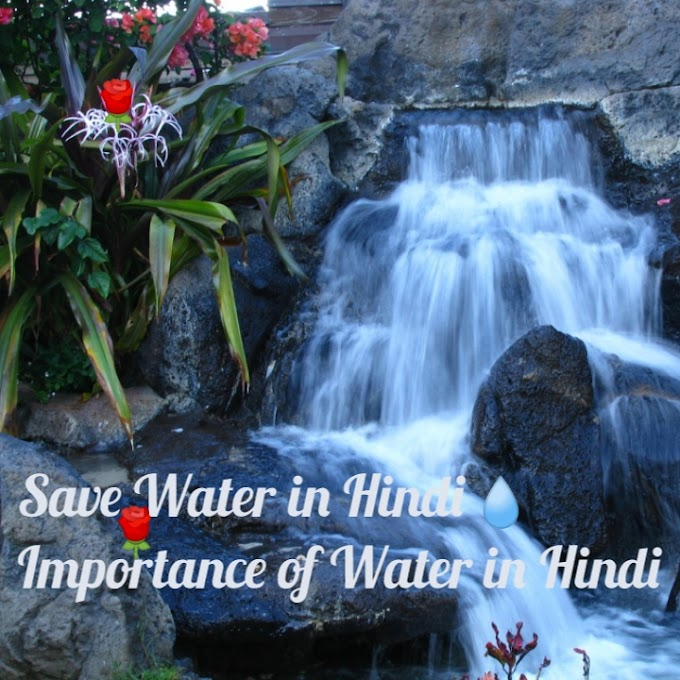 Save Water in Hindi - Importance of Water in Hindi
