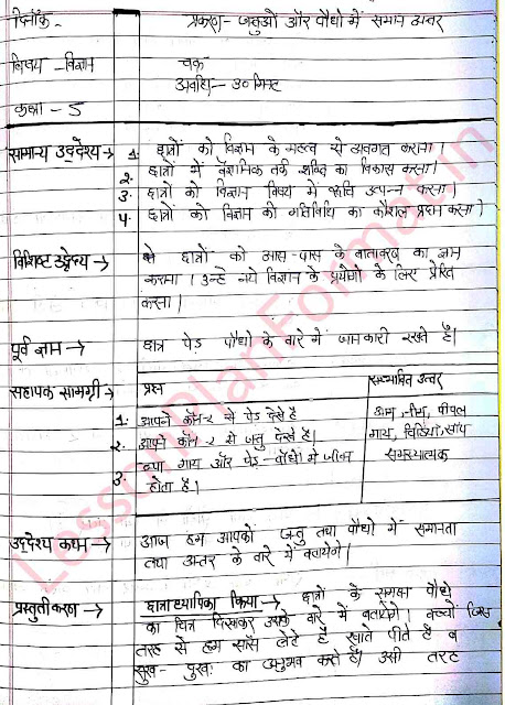 Science Lesson Plan Class 5 in Hindi