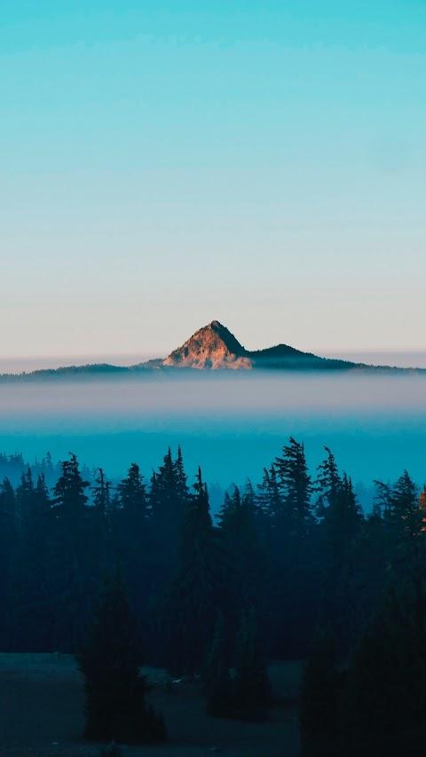Sương Phủ Trên Ngọn Núi Cao