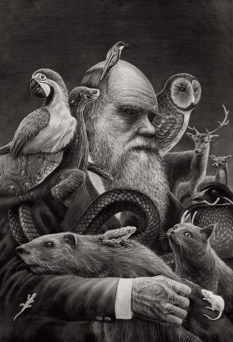03-Darwin-Børge-Bredenbekk-Eclectic-Subjects-in-Realistic-Pencil-Drawings-www-designstack-co
