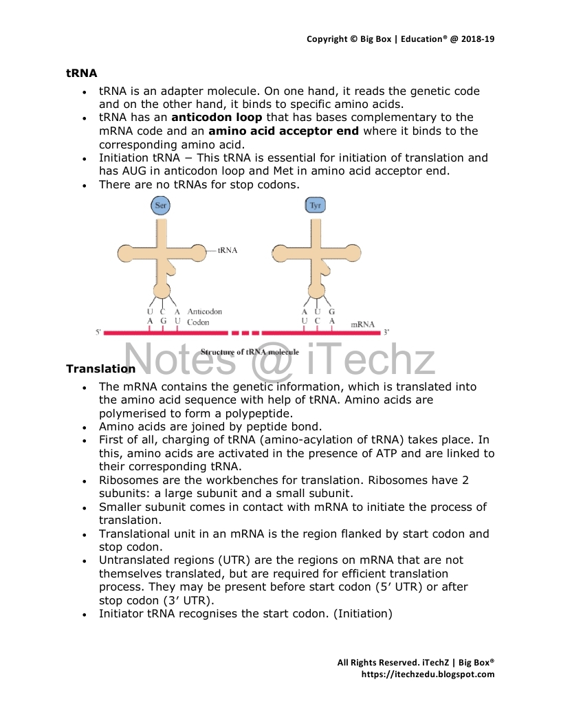 Revision Notes Molecular Basis Of Inheritance | Class 12 Biology