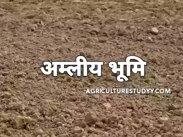 अम्लीय भूमि (Acidic soil in hindi)