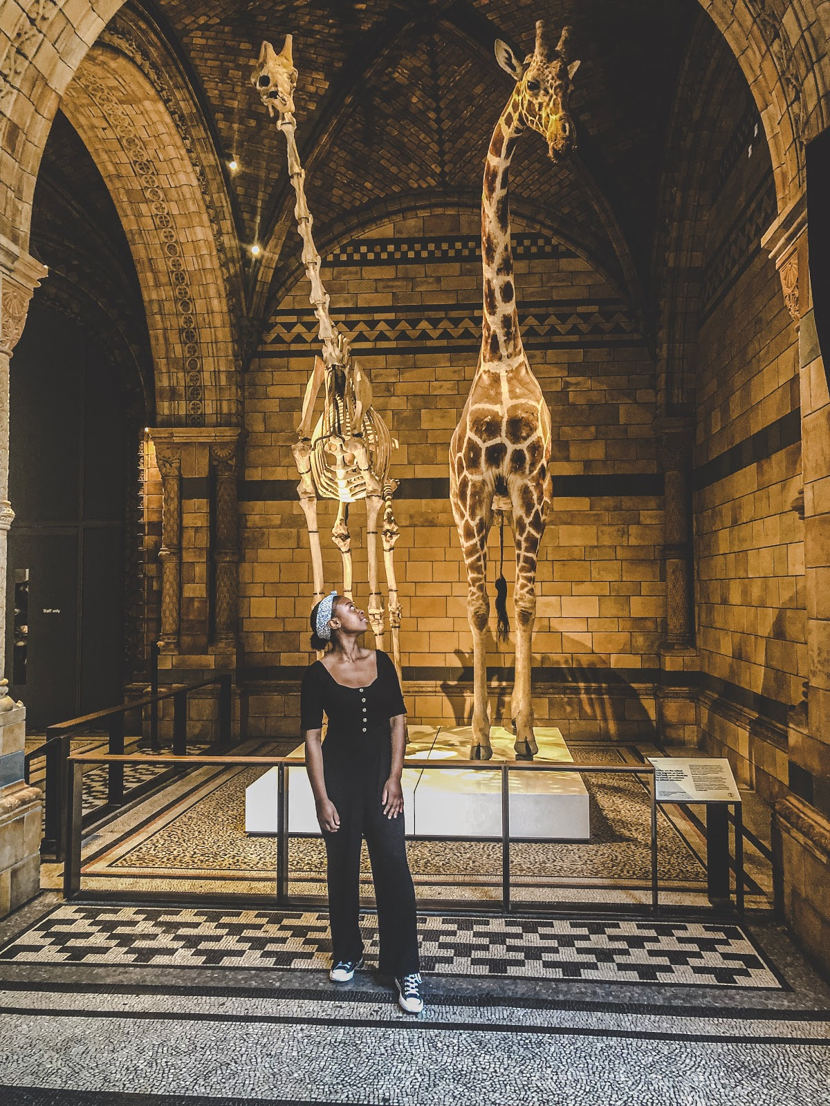 Me in a black jumpsuit looking up at a model giraffe in the natural history museum