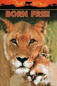 Watch Born Free Online Free in HD