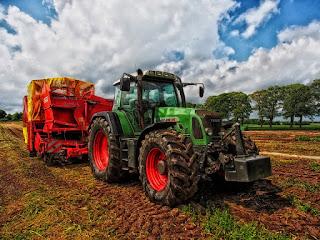 Agruo anunțuri agricultură