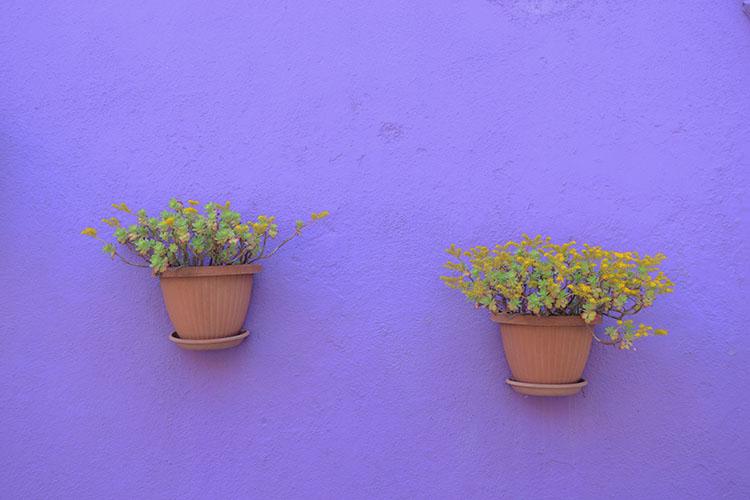 Simbologia del colore viola