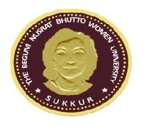 Latest Jobs in Begum Nusrat Bhutto BNB Women University 2021