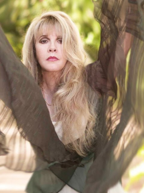 Stevie Nicks and husband kim anderson, young, stand back, landslide, bella donna, american horror story, lindsey buckingham, gypsy, buckingham nicks, fleetwood mac, rock a little, don henley, carrie fisher, joe walsh, taylor swift, age, wiki, biography