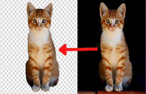 أفضل 3 مواقع مجانية لإزالة الخلفية من الصور