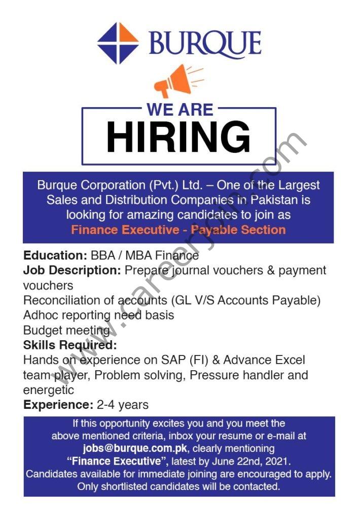 Burque Corporation Pvt Ltd Jobs in Pakistan 2021 Finance Executive -  Apply at jobs@burque.com.pk