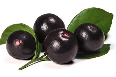 Acai Berry - acai berry in hindi