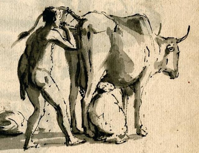 Hombre soplando en la vagina de una vaca.
