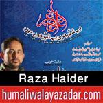 http://www.humaliwalayazadar.com/2016/04/raza-haider-manqabat-2016.html