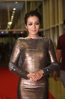 Actress Catherine Tresa in Golden Skin Tight Backless Gown at Gautam Nanda music launchi ~ Exclusive Celebrities Galleries 084.JPG