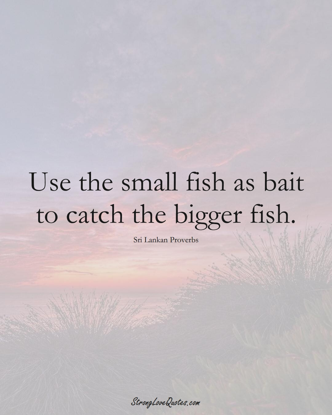 Use the small fish as bait to catch the bigger fish. (Sri Lankan Sayings);  #AsianSayings