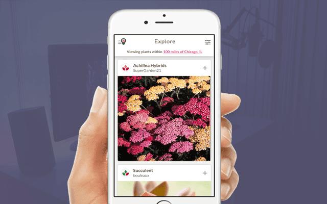 Top 3 Apps to Create a Beautiful Garden/Yard