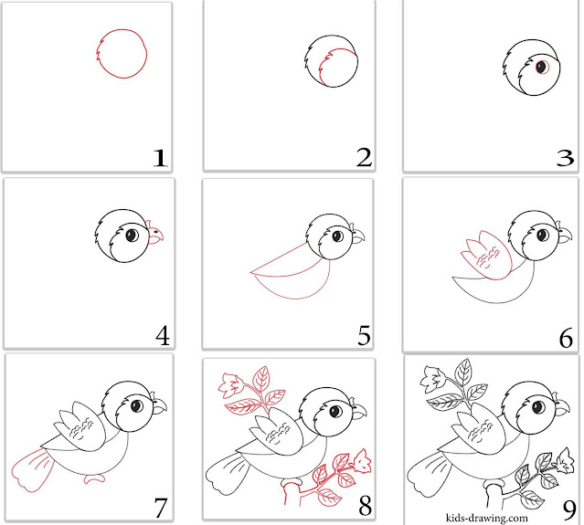 cute bird drawing step by step for kids