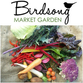 Simple Living Toowoomba - A visit to Birdsong Market Garden - Organic Nutrition Farming - 28 April