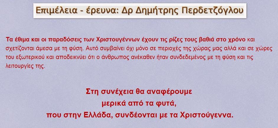 c408928e6b Ἕλλην Οὐρανόπαις  Τα φυτά των Χριστουγέννων  ποιά είναι