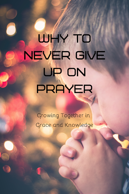 small child with hands clasped and eyes closed in prayer with blurred lights of Christmas tree in the background
